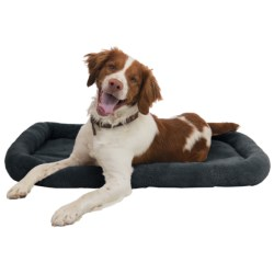 AKC Dog Crate Mat - Large