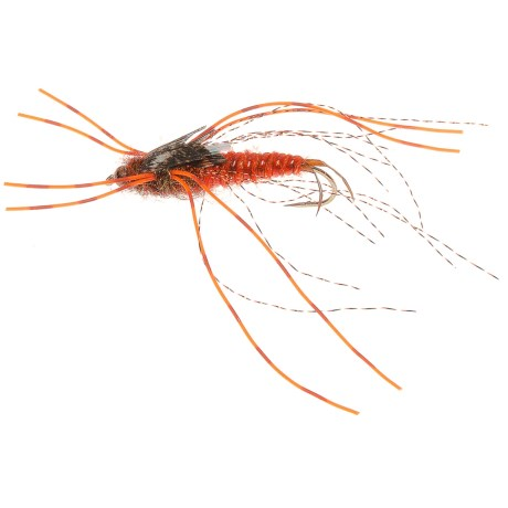 Flashback Stonefly Nymph Fly - Gold Bead Head, Orange Rubber Leg, Dozen