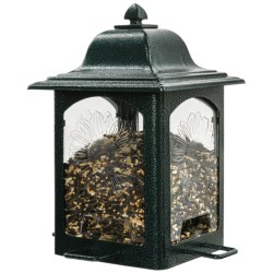 Birdscapes Sunflower Lantern Bird Feeder