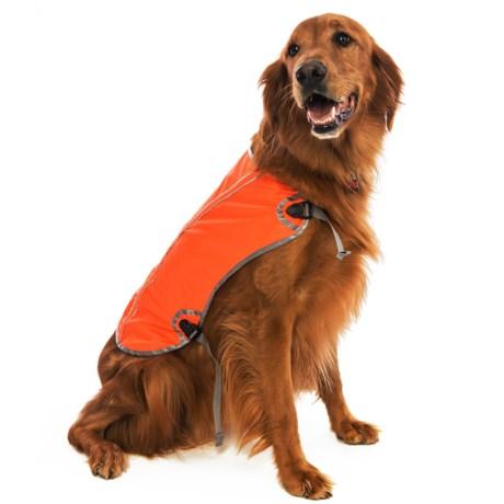 OllyDog Hi Vis Reflective Dog Vest - Large