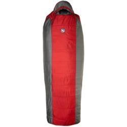 Big Agnes 15°F Encampment Sleeping Bag - Synthetic, Long Rectangular
