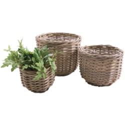 Napa Home & Garden Normandy Rattan Planter Baskets - Set of 3