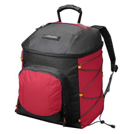 High Sierra Ski Boot Backpack Bag