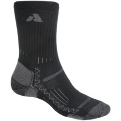 Point6 Lightweight Hiking Socks - Merino Wool, Crew (For Men and Women)
