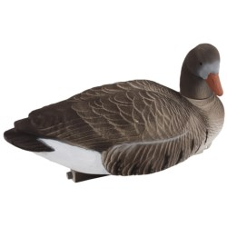 Tanglefree Pro Series Specklebelly Goose Floater Decoys - Fully Flocked, 4-Pack