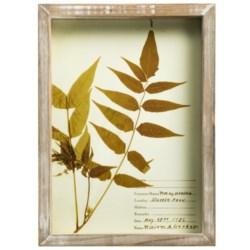 "Two's Company Botanical Art Print - 7.75x10.75"""