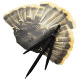 Flambeau Fantail Turkey Decoy - Jakester