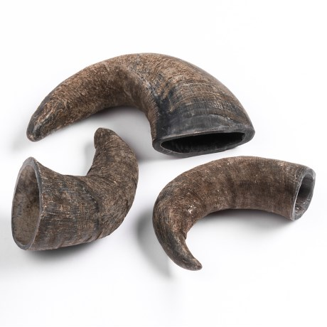 Outback Jack Small Bully Horn Chews - 3-Pack