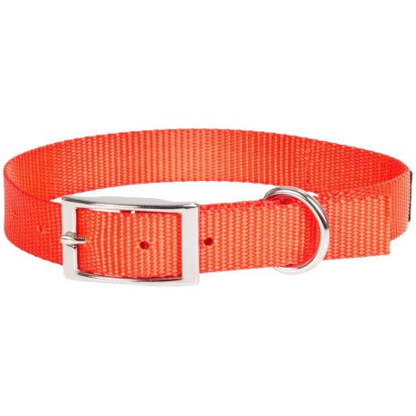 Browning Classic Standard Dog Collar