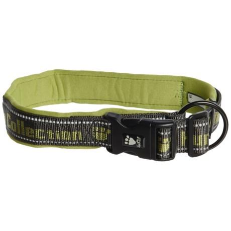 Hurtta Padded Dog Collar