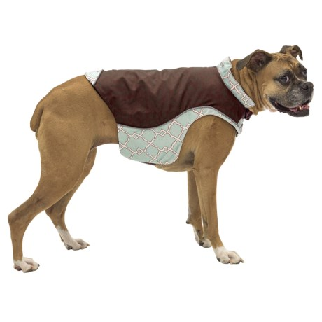 Kurgo Portsmouth Rain Coat for Dogs - Medium