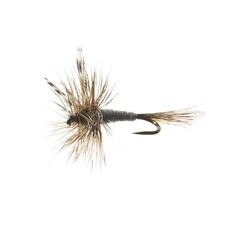 Black's Flies Adams Fly Dry Flies - 12