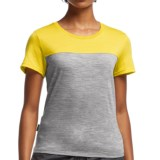Icebreaker Tech Lite Color-Block T-Shirt - UPF 30+, Merino Wool, Short Sleeve (For Women)