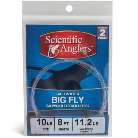 Scientific Anglers Premium Big Fly Saltwater Leaders - Loop, 2-Pack, 8'