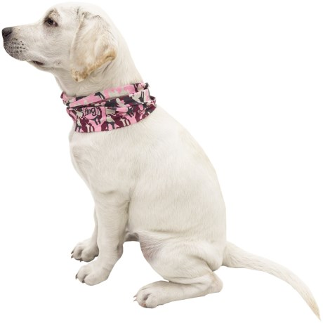 Buff Dog Reflective Buff - Active Odor Control