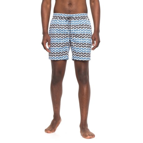 Mr. Swim Printed Swim Trunks (For Men)