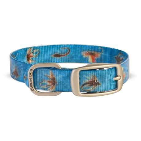 Dublin Dog KOA No-Stink Dog Collar - Medium