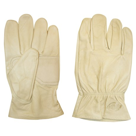 Dickies Creme Goatskin Drivers Gloves (For Men and Women)