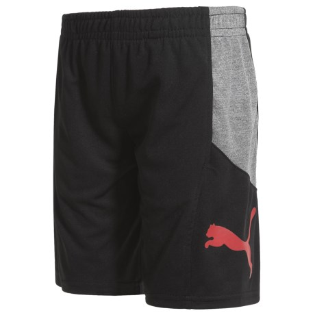 Puma Cat Logo Shorts (For Little Boys)