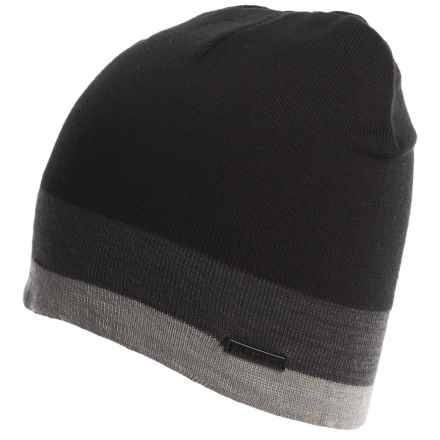 Rainforest Multi-Striped Beanie (For Men) in Black/Charcoal/Heather Grey - Closeouts