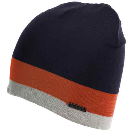 Rainforest Multi-Striped Beanie (For Men) in Navy/Orange/Grey Heather - Closeouts