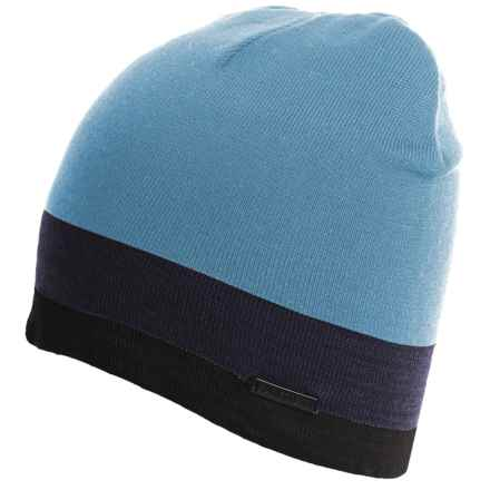 Rainforest Multi-Striped Beanie (For Men) in Powder Blue/Navy - Closeouts
