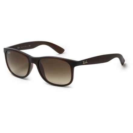 Ray-Ban Andy RB4202 Sunglasses in Brown/Brown - Overstock