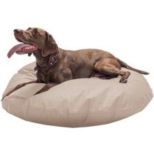 """Restless Tails Dog Bed - Knife Edge, 40"""" in Khaki - Closeouts"""