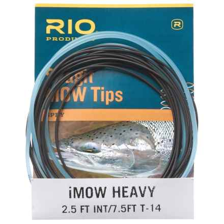 Rio Skagit iMOW 10' Intermediate Tip - Heavy in See Photo - Closeouts