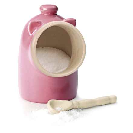 RSVP International Salt Keeper with Spoon in Pink - Overstock