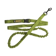Ruff Wear Roamer Dog Leash in Forest Green - Closeouts