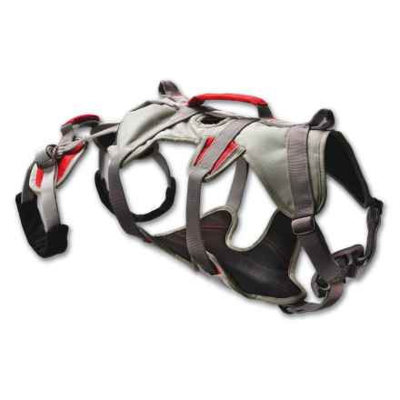 Ruffwear Doubleback Dog Harness in Granite Gray - Closeouts
