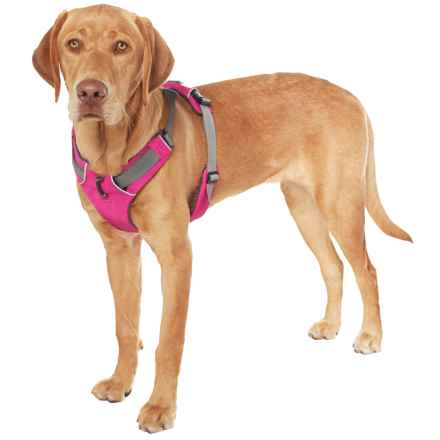 Ruffwear Front Range Dog Harness in Alpenglow Pink - Closeouts