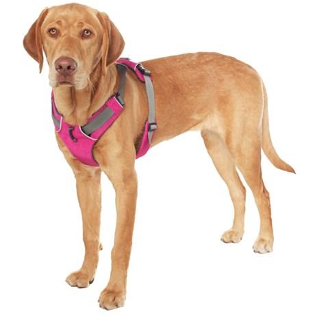 Ruffwear Front Range Dog Harness in Alpenglow Pink