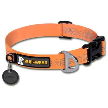 Ruffwear Headwater Dog Collar in Orange Sunset - Closeouts