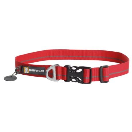 Ruffwear Hoopie Dog Collar in Red Currant