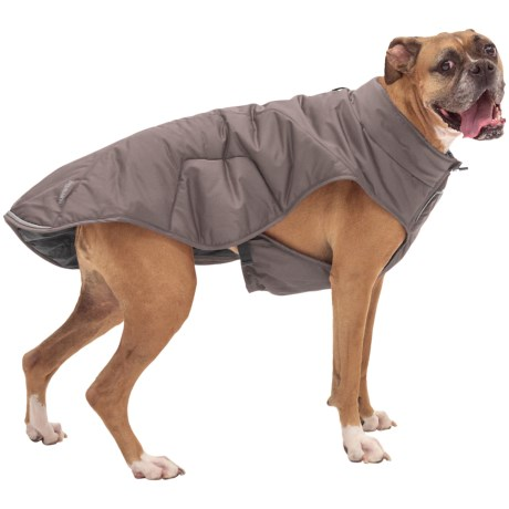 Ruffwear Quinzee Insulated Dog Jacket