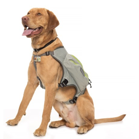 Ruffwear Singletrak Hydration Dog Pack in Cloudburst Gray