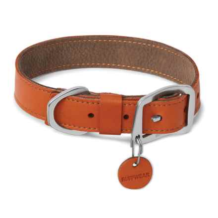 Ruffwear Timberline Dog Collar - Leather in Canyonlands Orange - Closeouts