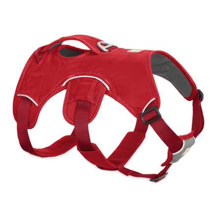 Ruffwear Web Master Dog Harness in Red Currant - Closeouts