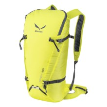 Salewa Apex 22 Backpack in Spring - Closeouts