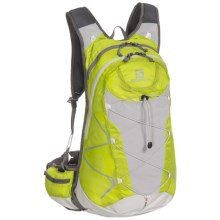 Salomon Synapse 20 Backpack in Organic Green/Grey - Closeouts