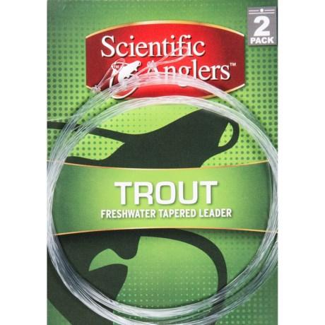 Scientific Anglers Premium Freshwater Trout Leaders - Loop, 2-Pack, 9' in Clear