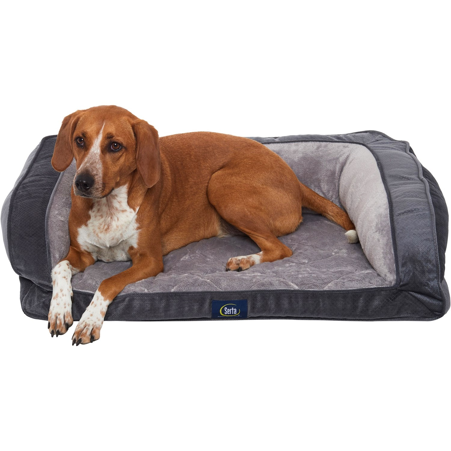 Sensational Serta Charcoal Quilted Couch Dog Bed 39X28 Save 23 Machost Co Dining Chair Design Ideas Machostcouk