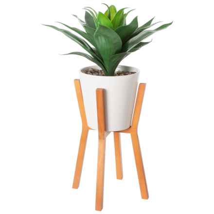 "Siena Floral Accents Aloe in Ceramic Pot with Wooden Stand - 26"" in White - Closeouts"