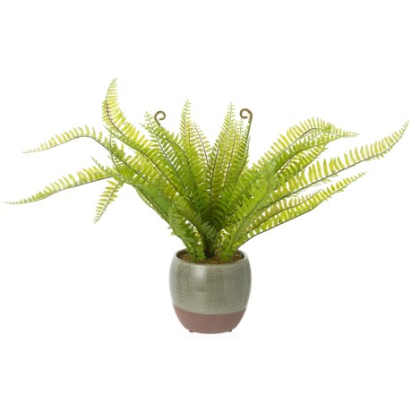 """Siena Floral Accents Fern in Two-Tone Ceramic Pot - 15.5"""" in See Photo"""