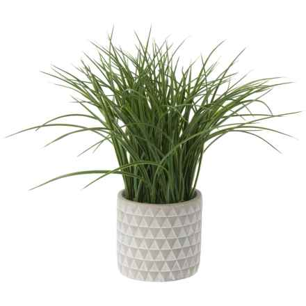 """Siena Floral Accents Grass in Cement Pot - 14"""" in Gray - Closeouts"""