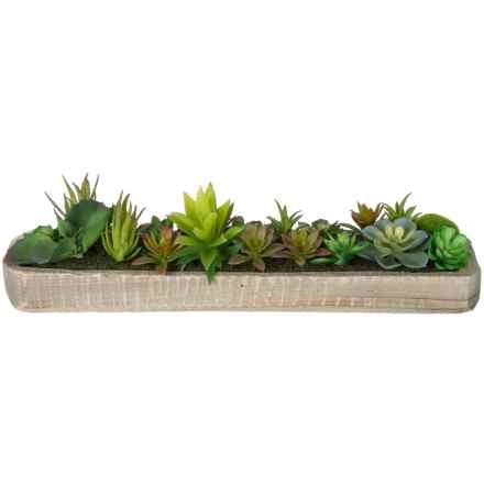 Siena Floral Accents Succulent Garden in Wood Planter in See Photo - Closeouts