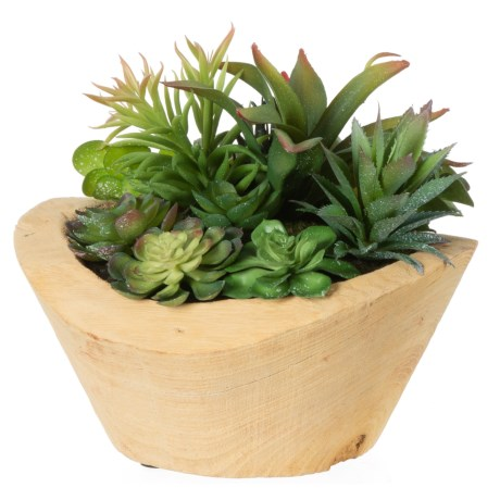 """Siena Floral Accents Succulent Garden in Wood Pot - 10x11.5x10"""" in See Photo"""