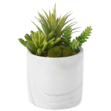 """Siena Floral Accents Succulent in Cement Pot - 8.5"""" in Gray - Closeouts"""